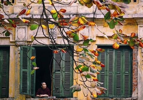 Hanoi Back Street Walk