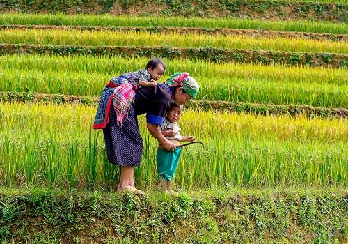 In-depth Vietnam Explore 20 days