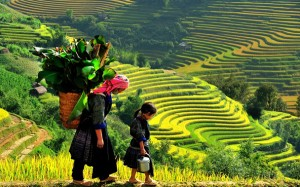 An amazing way to Ta Van village – an ideal place for Sapa homestay