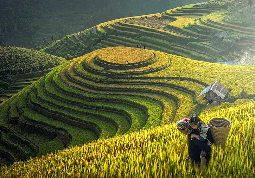 Travel experience when taking Sapa Vietnam tours