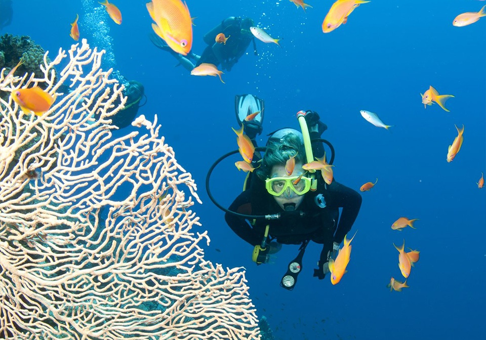 Scuba Diving in Nha Trang