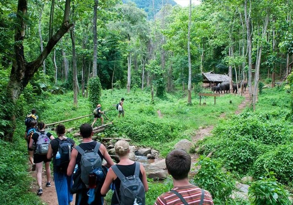 cuc phuong national park trekking