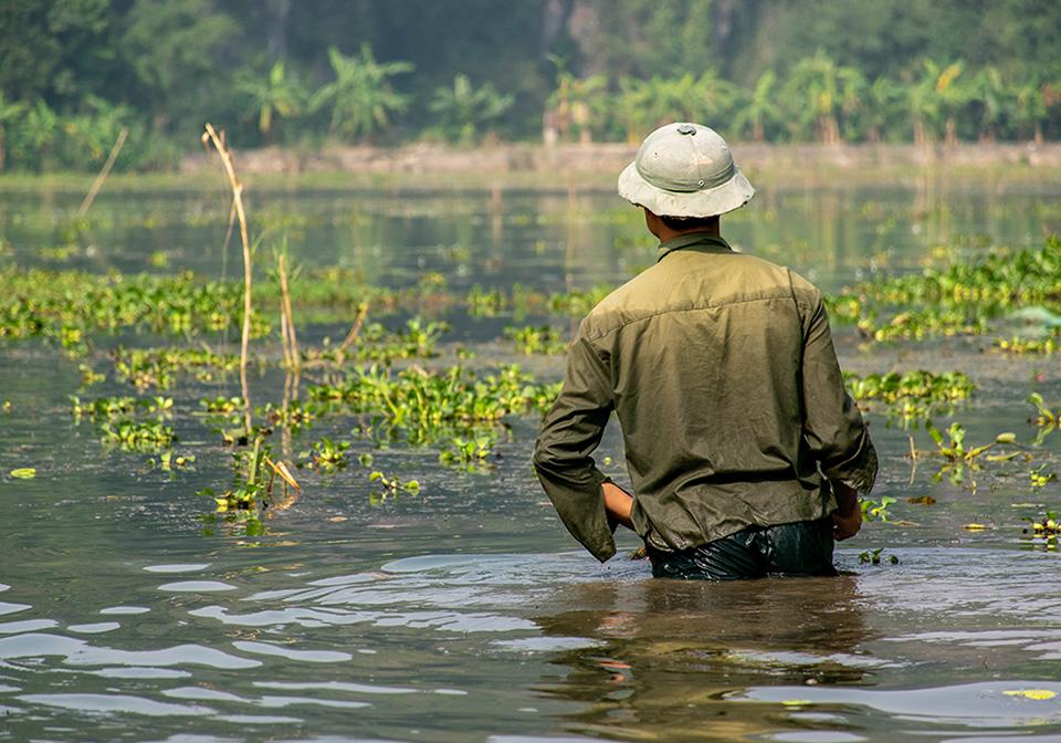 Peaceful life in Ninh Binh
